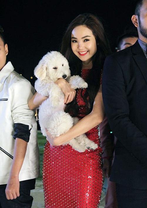 Chú cún có tên Santa do MC Quốc Bình tặng được Minh Hằng nâng như nâng trứng. Nữ ca sĩ thường xuyên ôm Santa ngủ, thậm chí bế lên thảm đỏ sự kiện.