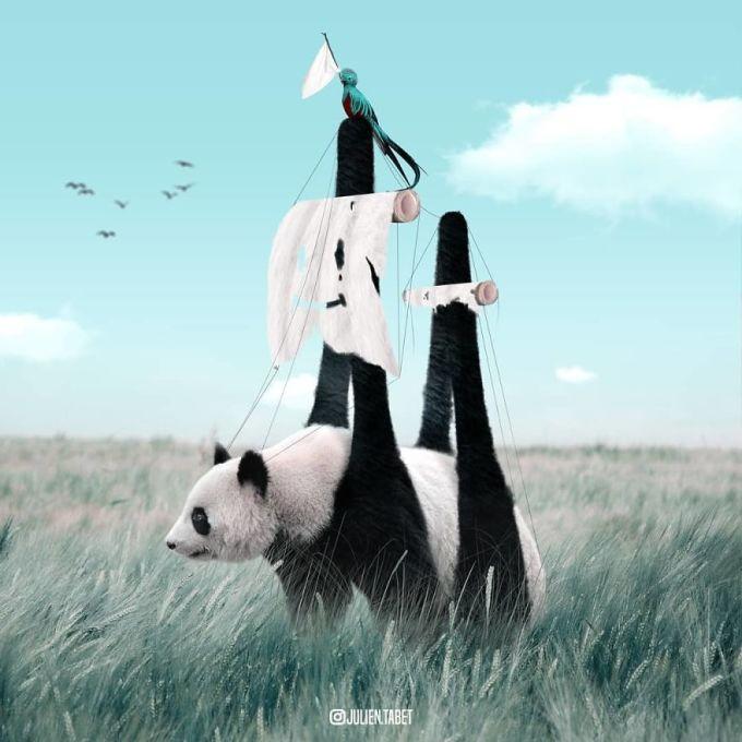 <p> Bộ lông của gấu trúc được tận dụng làm cánh buồm ra khơi cho một con chim.</p>