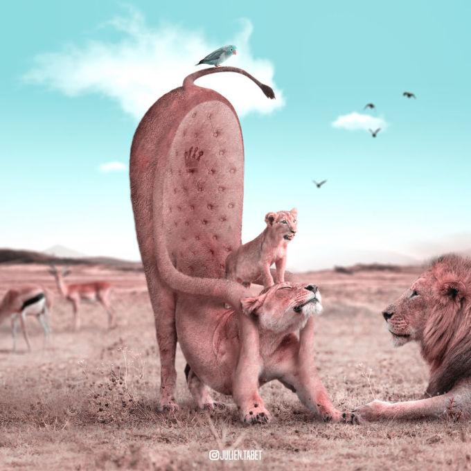 <p> Lưng của sư tử mẹ trở thành ghế ngồi vững chắc cho đứa con.</p>
