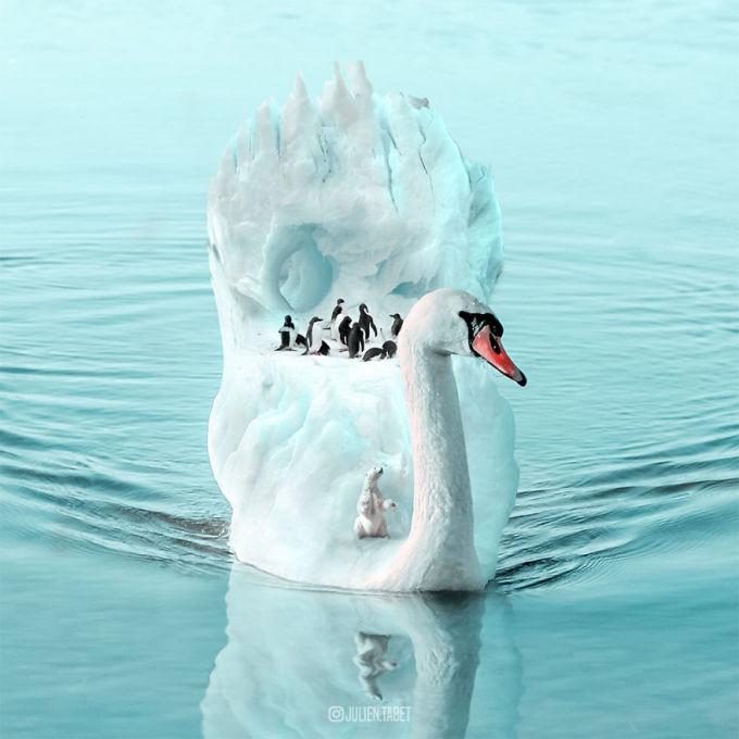 <p> 'Cung điện' hoàn hảo của đàn chim cánh cụt.</p>