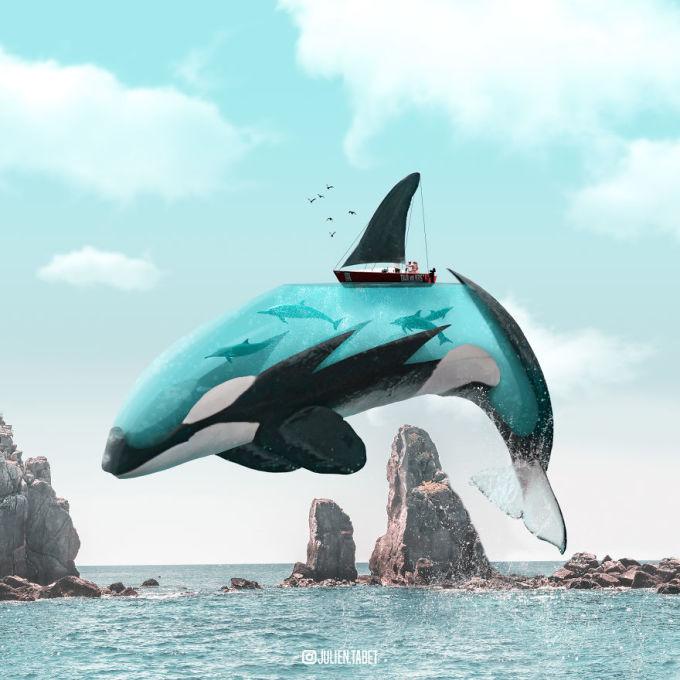 <p> Thế giới rực rỡ ẩn bên trong thân hình của chú cá voi.</p>