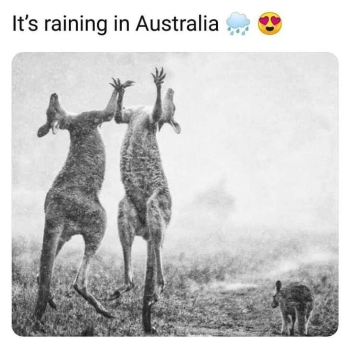 """<p> Đến sáng 6/1, <a href=""""https://ione.vnexpress.net/tin-tuc/nhip-song/hong/mua-giup-australia-ha-nhiet-4037808.html?vn_source=Home&vn_campaign=Box-NhipSong&vn_medium=Item-1&vn_term=Desktop"""" rel=""""nofollow"""">mưa nhẹ</a> kéo theo thời tiết thay đổi khiến nhiệt độ tại Victoria, Australia dịu lại sau khi nhiều khu vực đạt ngưỡng 40 độ C trong ngày. Những cơn mưa rào được dự báo tiếp diễn trong vài ngày tới, trước khi nắng nóng tiếp tục trở lại vào cuối tuần.</p>"""