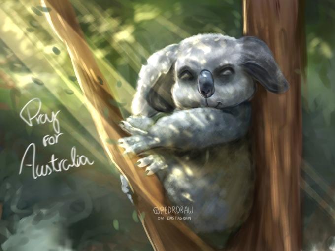 <p> Gấu Koala là một trong những loài động vật bản địa chịu ảnh hưởng nặng nề nhất. Theo <em>news.com.au</em>, có khoảng 8.000 con gấu Koala bị cháy thành than vì hỏa hoạn.</p>