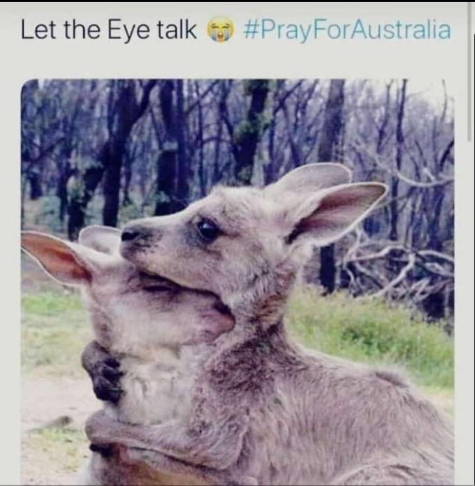 <p> Người dân trên khắp thế giới hướng về Australia.</p>