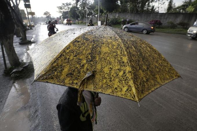 <p> Bụi phủ kín một chiếc ô.</p>