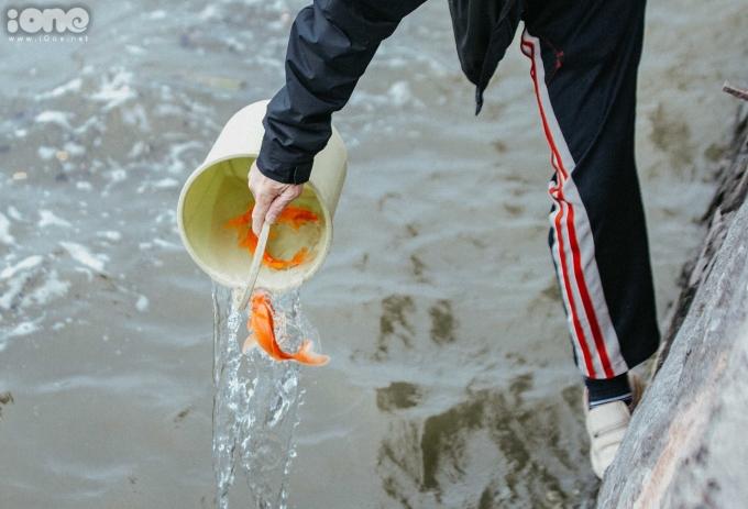 <p> Khu vực Hồ Tây là địa điểm được nhiều người dân chọn thả cá chép. Cá được ném, hất rơi tự do xuống dòng sông.</p>