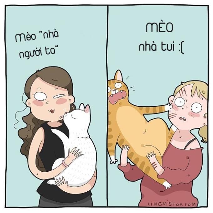 <p> Nhìn mèo nhà người ta thì ao ước. Nhìn sang mèo nhà mình thì... tủi không muốn nói.</p>