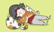 Chuyện của hội yêu mèo (3)