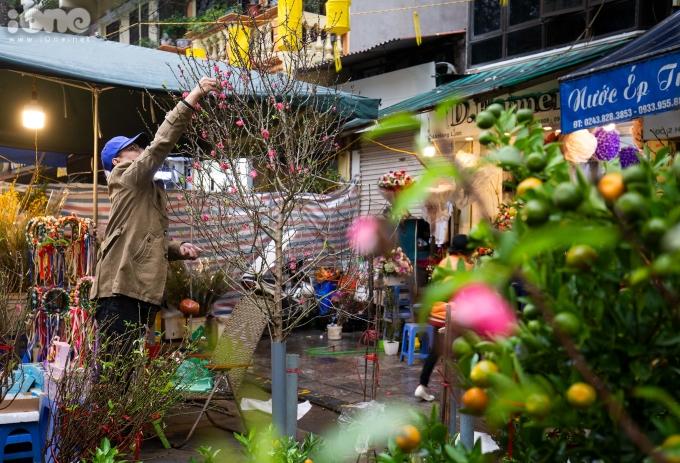 <p> Dạo một vòng chợ hoa Hàng Lược sẽ thấy sự phong phú, đa dạng của cây và hoa. Những cành đào nhỏ cầm tay có giá dao động từ 50.000 đến hơn 100.000 đồng/cành. Còn những cành đào to, ra hoa nhiều hơn có giá khoảng 300.000 đến một triệu đồng.</p>