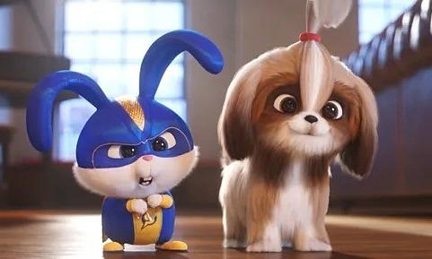 5 phim hoạt hình dễ thương về thế giới động vật