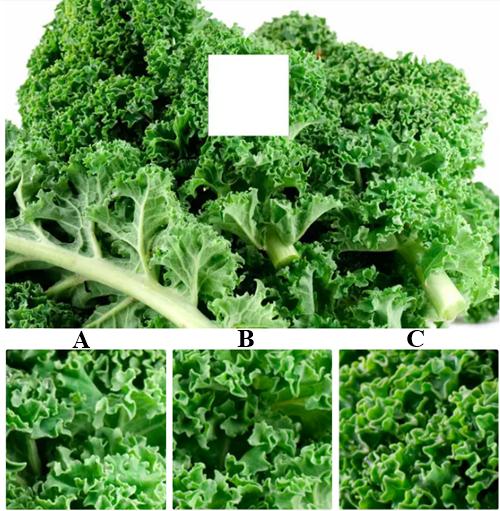 Đố bạn vượt qua 7 thử thách về các loại rau