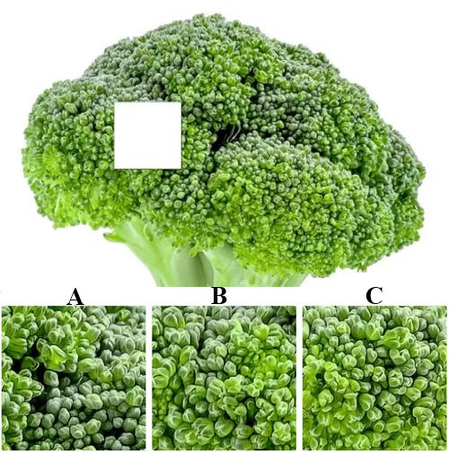 Đố bạn vượt qua 7 thử thách về các loại rau - 6