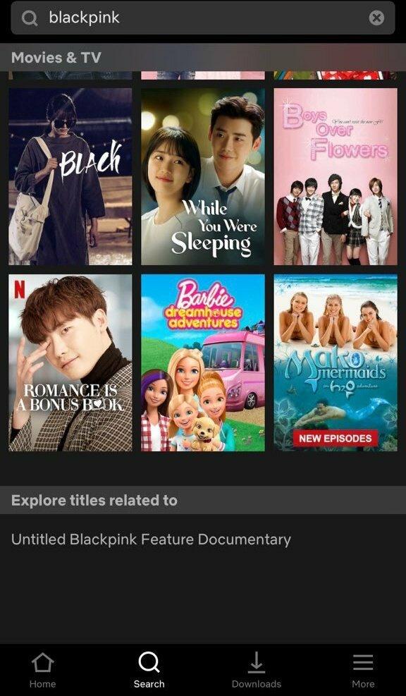 Black Pink có một bộ phim tài liệu chưa ấn định ngày phát sóng trên Netflix.