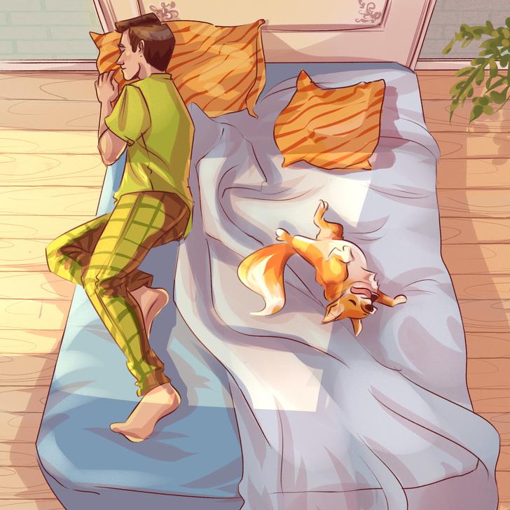 Dáng ngủ của thú cưng bộc lộ cảm xúc - 9
