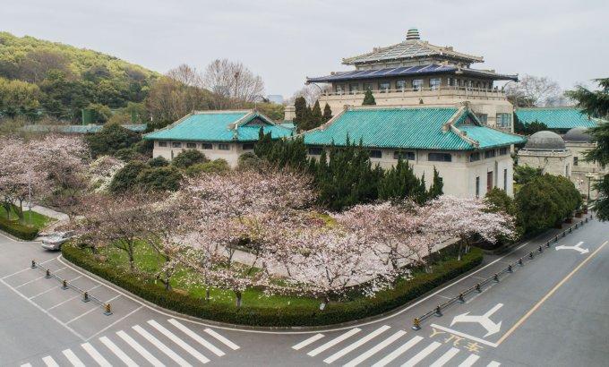 """<p> Đại học Vũ Hán (tỉnh Hồ Bắc) là điểm ngắm hoa anh đào nổi tiếng ở Trung Quốc. Tháng 3 hàng năm, nơi đây đón hàng nghìn lượt khách những ngày cuối tuần. Mùa xuân năm nay, ĐH Vũ Hán không mở cửa đón du khách vì thành phố vẫn đang bị <a href=""""https://ione.net/tin-tuc/video/vu-han-truoc-va-sau-khi-bung-phat-covid-19-4064884.html"""" rel=""""nofollow"""">phong tỏa</a> do Covid-19.</p>"""