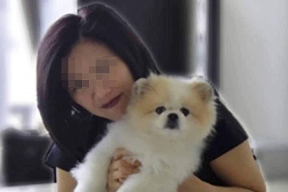 Con chó Pomeranian trở về nhà. Ảnh:SCMP/ Facebook.