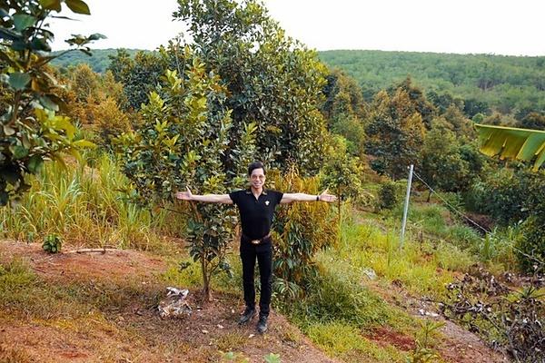 Ngọc SơnMảnh đất rộng 20.000 m2 ở Lâm Đồng là món quà một người hâm mộ tặng cho Ngọc Sơn. Anh trồng nhiều loại cây ăn trái như sầu riêng, bơ, mít, chuối, rau củ quả tại đây. Vì diện tích lớn, anh phải thuê người trông coi, chăm sóc cây cối.