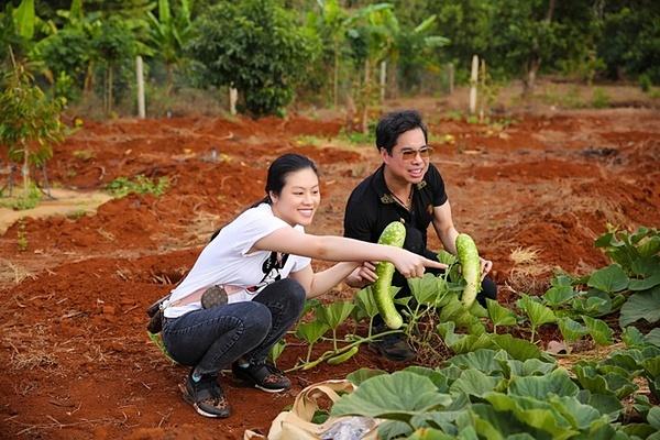 Ngọc Sơn hái rau ngoài vườn. Anh cho biết bản thân muốn trồng nhiều dược liệu trên mảnh đất này để tặng bà con nghèo chữa bệnh.