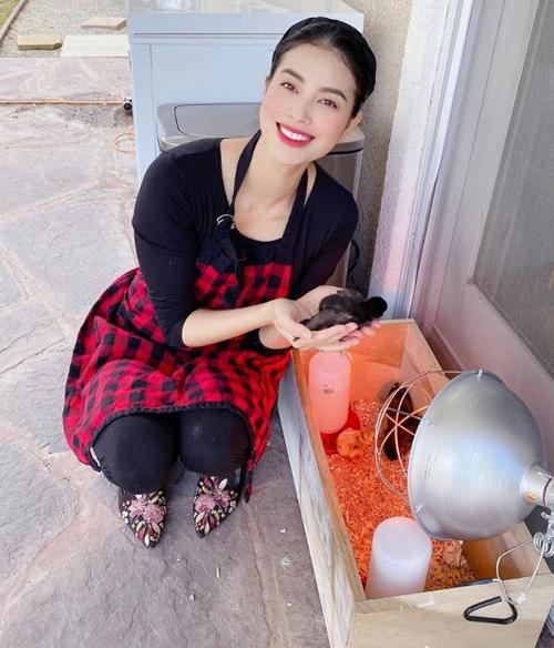 Hoa hậu Phạm Hương cho biết: Mùa dịch rảnh rỗi nên mua được mấy chú gà con về nuôi, trồng thêm rau trong vườn. Vừa cho em Max chơi, vừa dạy cho em Max trải nghiệm chăm sóc vật nuôi