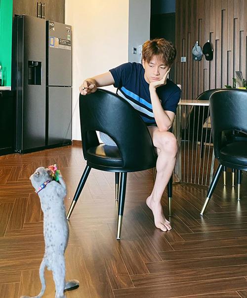 Ngô Kiến Huy rảnh rỗi ở nhà bày trò chơi với mèo cưng.