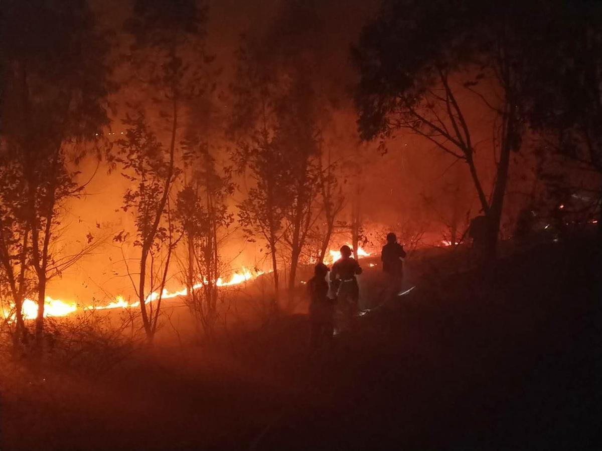 Lính cứu hỏa chiến đấu với cháy rừng. Ảnh: