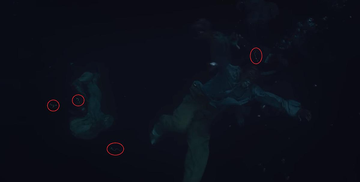 Ký sinh trùng chui ra khi xác sống rơi xuống nước ở tập 3.