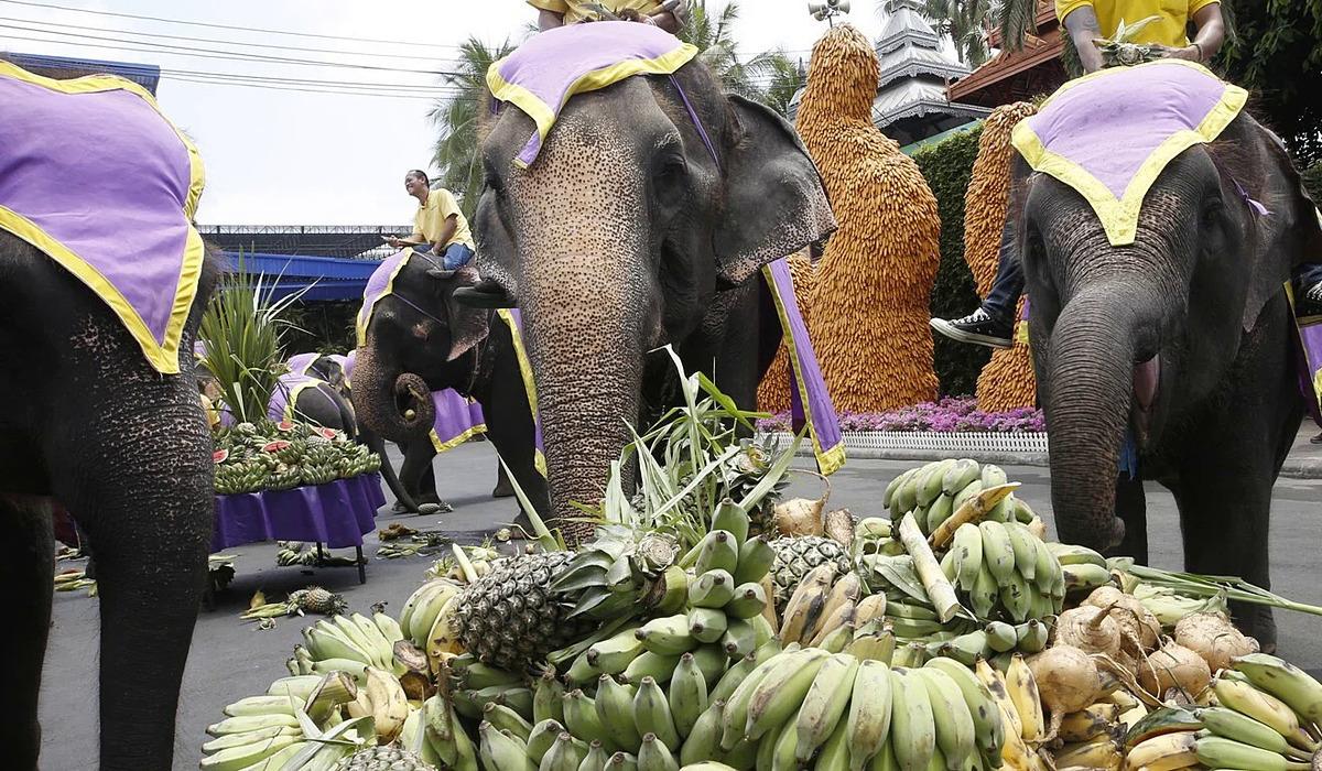 Bữa tiệc buffet dành cho voi kỉ niệm Ngày voi quốc gia, tại Vườn Nongnooch, Pattaya, Thái Lan hôm 13/3. Ảnh: EPA.