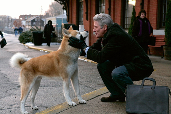 Những phim cảm động về thâm tình giữa người và thú cưng - 2