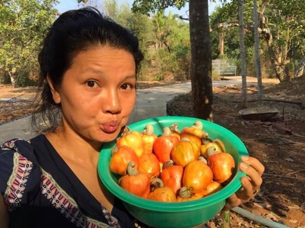Kiều Trinh thu hoạch rau củ trong vườn quê, rộng 5.000 m2. Cô về quê sống từ hồi tháng 1. Trên mảnh đất do cha để lại, cô trồng nhiều nông sản và cây ăn trái.