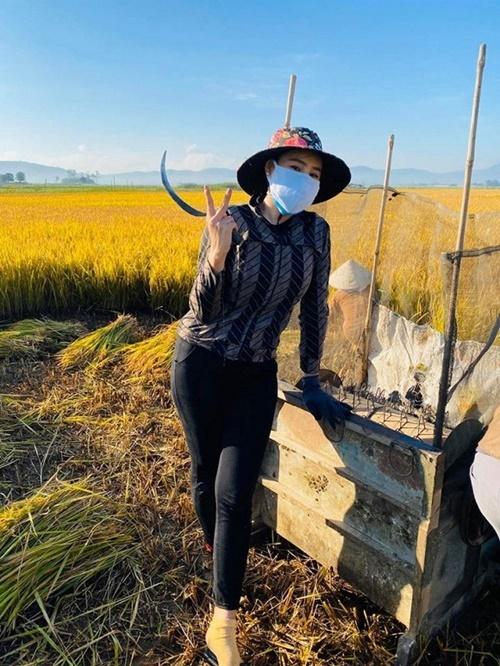Hồ Bích Trâm về quê tại Đức Phổ, Quảng Ngãi từ vài ngày trước. Cô đeo khẩu trang, mặc trang phục kín ra đồng gặt lúa. Sau buổi gặt, cô cùng người thân ăn trưa ngay tại đồng. Trước đó, cô chia sẻ nhiều hình ảnh, video làm bánh xèo, nướng gà ở ngoài đồng cùng người thân.