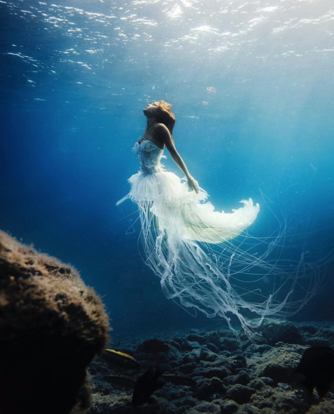"""<p class=""""Normal""""><span><span>Vẻ đẹp yêu kiều của một nàng tiên...sứa dưới đại dương.</span></span></p>"""