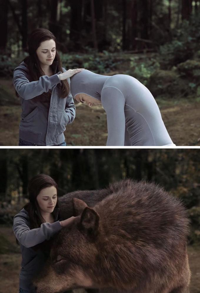 <p>Người Sói trong <em>Twilight</em> trông bớt hoang dã và oai phong hơn trên phim trường.</p>