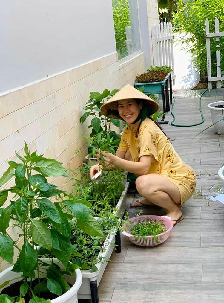Cô tranh thủ hái rau muống mang tặng bạn bè, đồng nghiệp. Nhờ kinh nghiệm hơn hai năm làm vườn, Thúy Hà đảm bảo bữa ăn gia đình luôn có đủ rau sạch, dù mỗi loại cô chỉ trồng một ít.