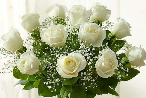 Nếu là 1 bông hoa, 12 cung hoàng đạo sẽ là loài hoa nào? - 6