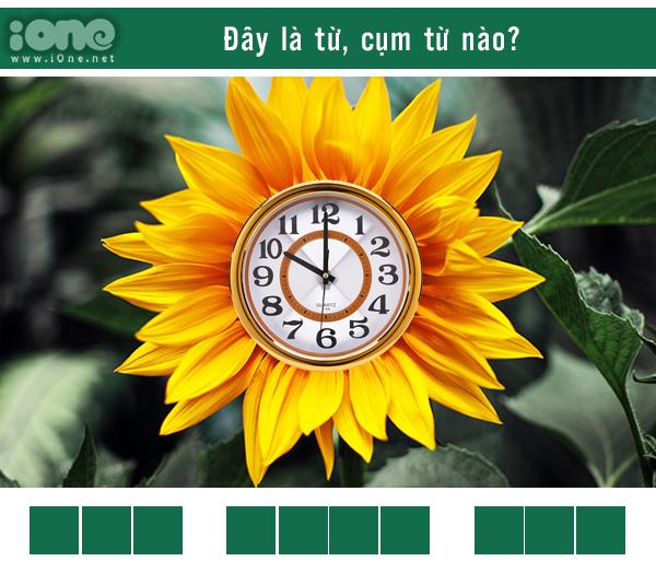 Quiz: Thánh ngôn ngữ nhìn phát biết ngay đây là từ gì? - 2