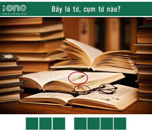 Quiz: Thánh ngôn ngữ nhìn phát biết ngay đây là từ gì? - 16