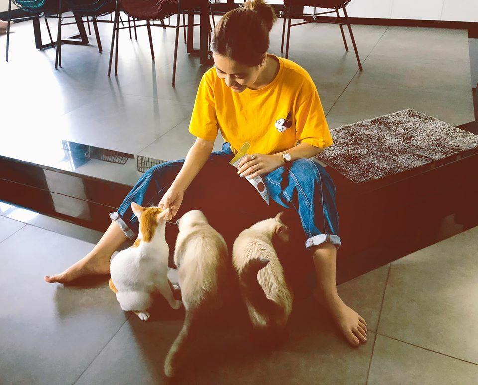 Hoàng Thùy Linh khoe hình ảnh giản dị khi ngồi chơi với đàn mèo.