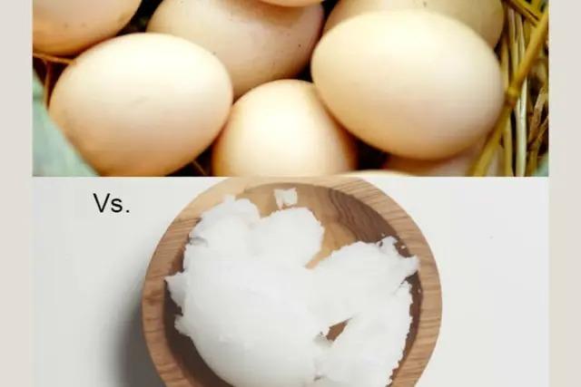 Người thông minh sẽ chọn được thức ăn tốt cho sức khỏe - 11