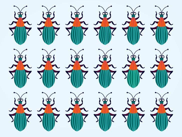 Soi kính lúp tìm con bọ có màu sắc khác lạ - 12