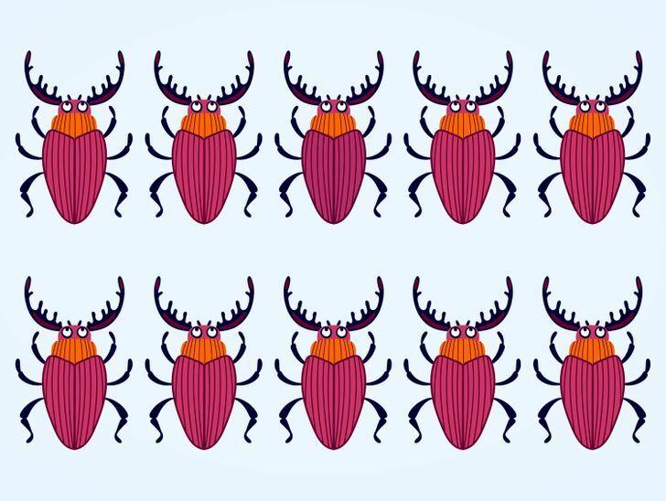 Soi kính lúp tìm con bọ có màu sắc khác lạ - 14