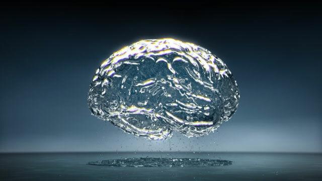 Bộ não có bao nhiêu phần trăm là nước? - 17