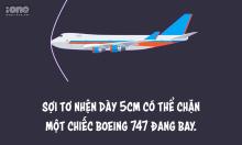 Fun Facts: 10 sự thật nghe cực vô lý