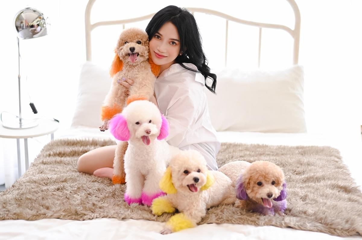 Gia tài 8 chú cún cưng trăm triệu của Sĩ Thanh