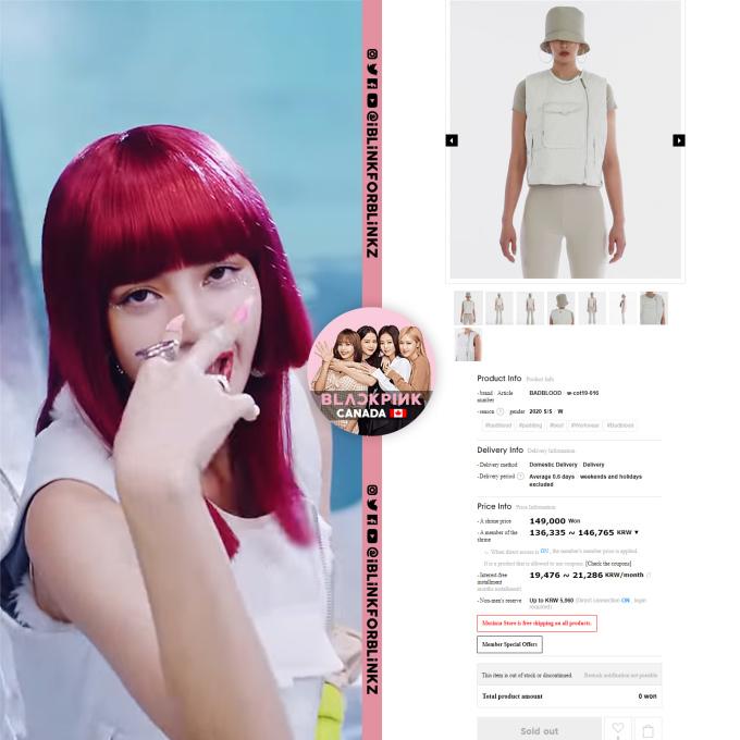 <p>Sau khi MV <em>How You Like That </em>lên sóng, những trang phục đắt đỏ của Black Pink cũng nhanh chóng được bóc giá. Lisa mặc áo của thương hiệu Hàn Badblood có giá 124 USD.</p>